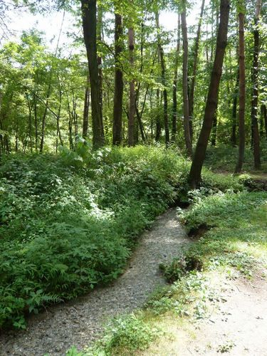 白州・尾白の森公園べるが