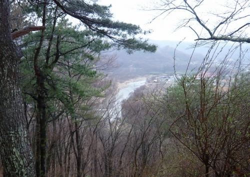 木立の間の千曲川